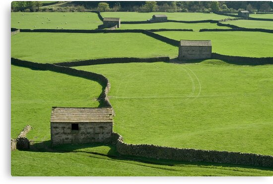 Gunnerside Barns - The Yorkshire Dales by Dave Lawrance