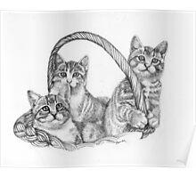 Kitten Mischief Poster