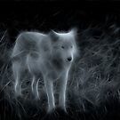 The White Wolf by Don Alexander Lumsden (Echo7)