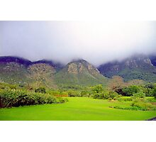Capetown Botanical Garden, South Africa Photographic Print