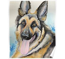 Max the GSD Poster
