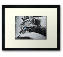 Looking Out at the World Framed Print
