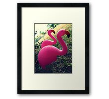 04-26-11:  I Have Flamingos!!!! Framed Print