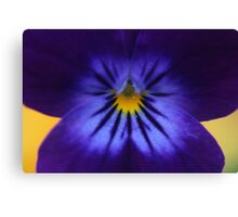 Flower in my garden Canvas Print