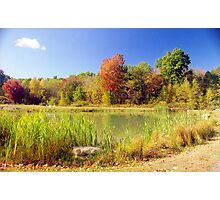 Autumn View, New England Photographic Print
