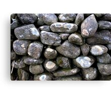 The Dry Stone Wall Canvas Print