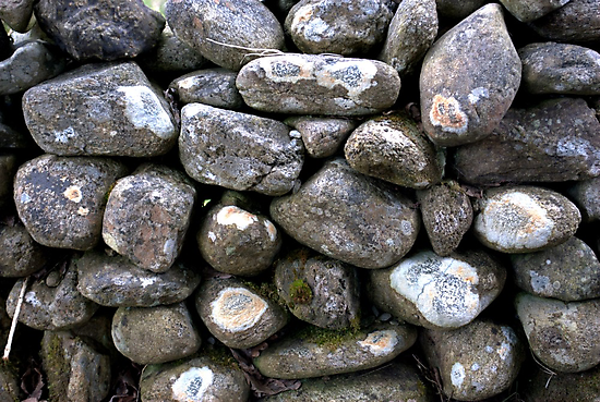 The Dry Stone Wall by oulgundog
