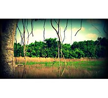 Lookout point  Photographic Print