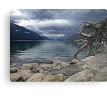 Moose Lake Metal Print