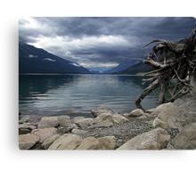 Moose Lake Canvas Print