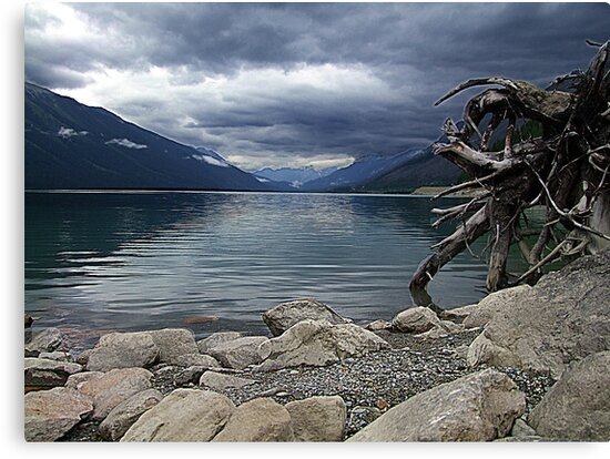 Moose Lake by George Cousins