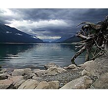 Moose Lake Photographic Print