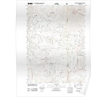 USGS Topo Map Oregon Brown Mountain 20110808 TM Poster