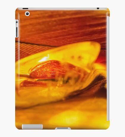 Soul Twin iPad Case/Skin