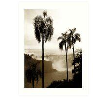 Iguazu palms Art Print