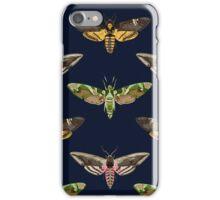 Hawk Moths 1 iPhone Case/Skin