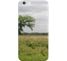 Solitary Tree iPhone Case/Skin