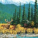 Mountain Mule Deer by Walter Colvin