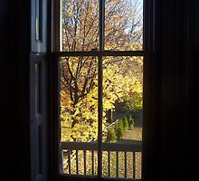 Through The Glass - Autumn View by RVogler