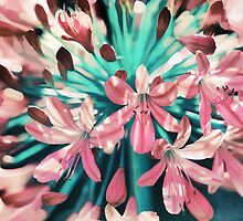 Sunny Agapanthus Flower in Pink & Teal by micklyn