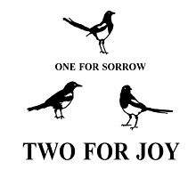 One for Sorrow- Magpies by Kyleacharisse
