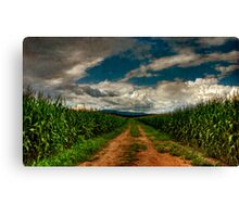 Fields Of Summer Canvas Print