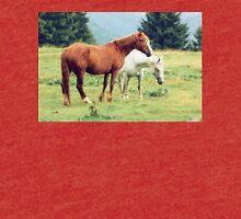 Romanian horses Tri-blend T-Shirt