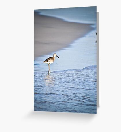 Sandpiper By the Waves Greeting Card