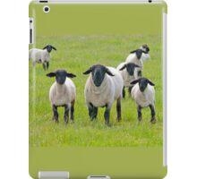 Suffolk Sheep iPad Case/Skin