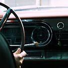 Please, Driver by BreeDanielle