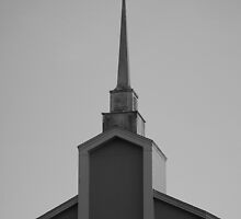 Crow on a Steeple by Laurie Perry
