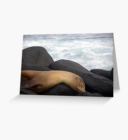 Sleeping Rocks Greeting Card