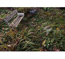 PARK BENCH by SIMON COLLINS