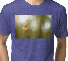 Hanging Tri-blend T-Shirt
