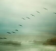 Formation3 by Mark Wade
