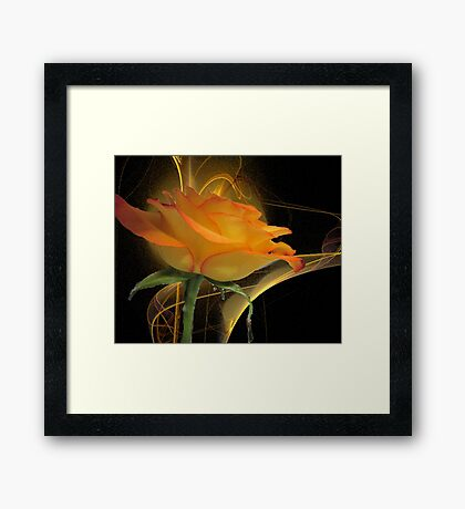 The Apophysis Rose Framed Print