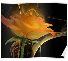 The Apophysis Rose Poster