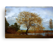A Day at the Park Canvas Print