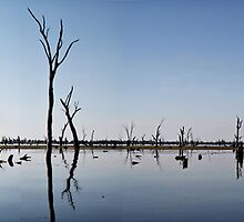 lake mulwala by grahampike