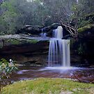 Irrawong Reserve waterfall by Doug Cliff