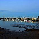 Sandgate Yacht Club at pre-dawn. Brisbane, Queensland, Australia. by Ralph de Zilva
