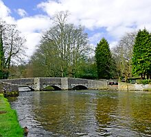 Sheepwash Bridge, Ashford-in-the-Water by Rod Johnson