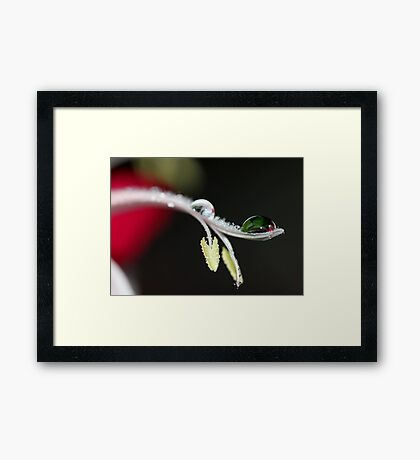 Sitting So Patiently Framed Print