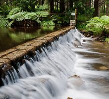 Catchment fall by Geoff Harrison