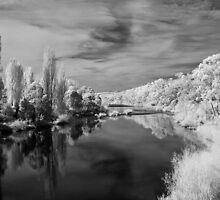 Derwent River by Ian Robertson