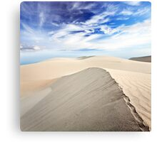 Beautiful sandy desert at day time Canvas Print
