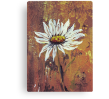 The Daisy follows soft the sun... Canvas Print