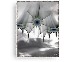 Come and see Canvas Print
