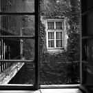 Windows by Stefan Kutsarov