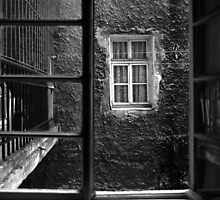 Windows by Stefan Kutsarov